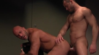 Jesse Jackman gets questioned by Jessy Ares!
