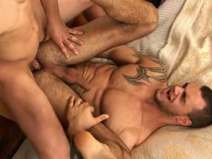 Max Gatos Gay XXX Gay Porn Tube Video Image